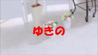 風俗店からの投稿動画 vol.363
